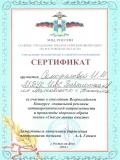 Сертификат Самофалова